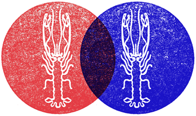 ling-logo-wp-overlay-small